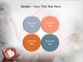 Rice PowerPoint Templates - Slide 18