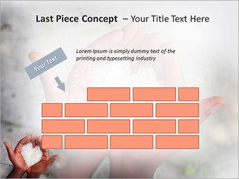 Rice PowerPoint Templates - Slide 26