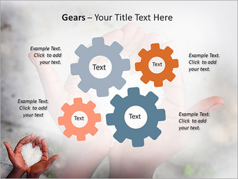 Rice PowerPoint Template - Slide 27