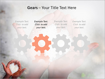 Rice PowerPoint Template - Slide 28
