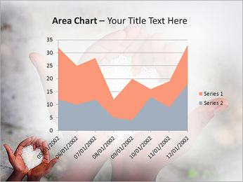 Rice PowerPoint Template - Slide 33