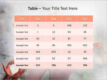 Rice PowerPoint Template - Slide 35