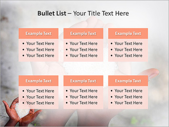 Rice PowerPoint Template - Slide 36