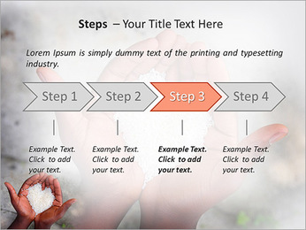 Rice PowerPoint Template - Slide 4