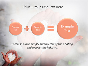 Rice PowerPoint Template - Slide 55