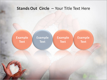 Rice PowerPoint Template - Slide 56