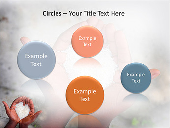 Rice PowerPoint Template - Slide 57
