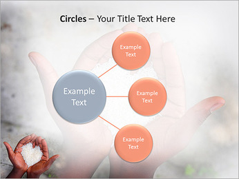 Rice PowerPoint Template - Slide 59