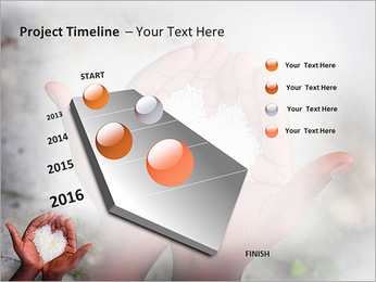 Rice PowerPoint Template - Slide 6