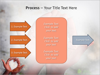 Rice PowerPoint Template - Slide 65