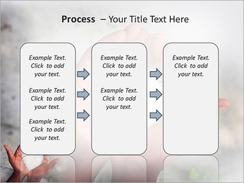 Rice PowerPoint Template - Slide 66