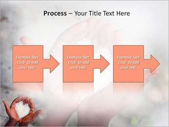 Rice PowerPoint Template - Slide 68