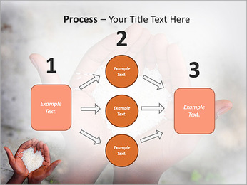 Rice PowerPoint Template - Slide 72