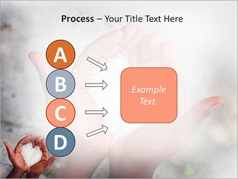 Rice PowerPoint Template - Slide 74