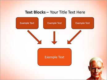 Head Anatomy PowerPoint Templates - Slide 50