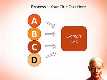 Head Anatomy PowerPoint Templates - Slide 74