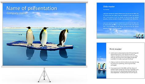 Penguins On Ice Floe PowerPoint Template