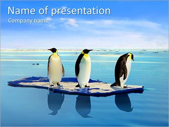 Penguins On Ice Floe PowerPoint Template - Slide 1