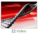 Red DNA Video