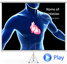 Heart Anatomy Animated PowerPoint Templates