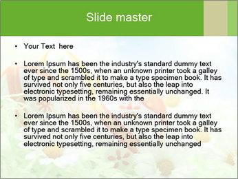 0000071068 PowerPoint Templates - Slide 2
