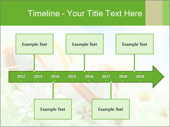 0000071068 PowerPoint Templates - Slide 28