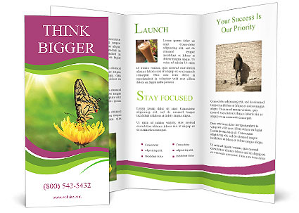0000071081 Brochure Template