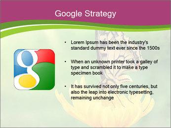 0000071081 PowerPoint Template - Slide 10
