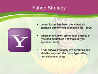 0000071081 PowerPoint Template - Slide 11