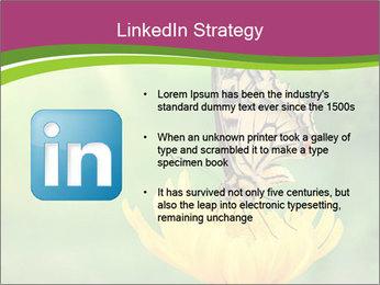 0000071081 PowerPoint Template - Slide 12