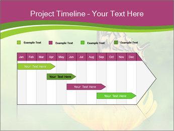 0000071081 PowerPoint Template - Slide 25