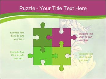 0000071081 PowerPoint Template - Slide 43
