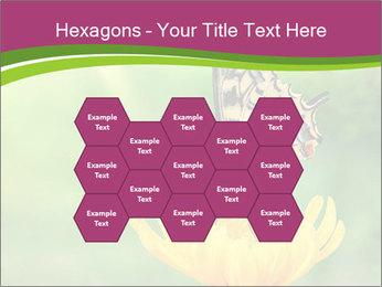 0000071081 PowerPoint Template - Slide 44