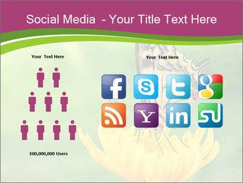 0000071081 PowerPoint Template - Slide 5