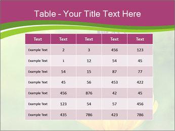 0000071081 PowerPoint Template - Slide 55