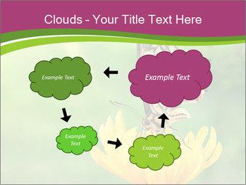 0000071081 PowerPoint Template - Slide 72