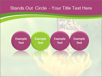 0000071081 PowerPoint Template - Slide 76