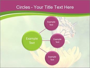 0000071081 PowerPoint Template - Slide 79