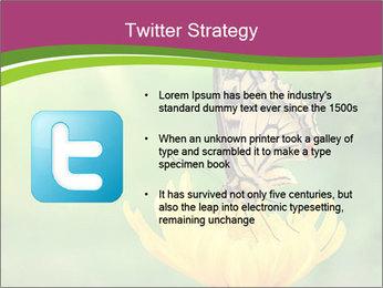 0000071081 PowerPoint Template - Slide 9
