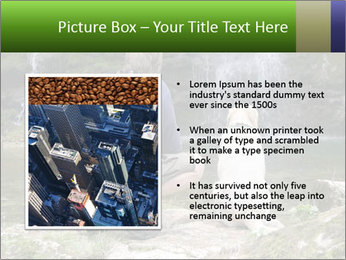 0000071082 PowerPoint Template - Slide 13