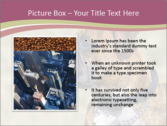 0000071133 PowerPoint Template - Slide 13