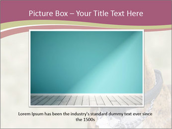 0000071133 PowerPoint Templates - Slide 15