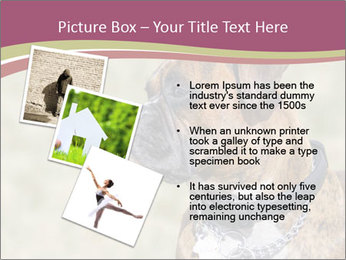 0000071133 PowerPoint Templates - Slide 17