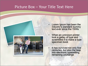 0000071133 PowerPoint Template - Slide 20