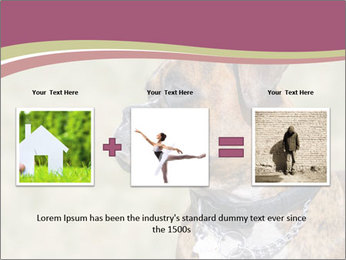 0000071133 PowerPoint Template - Slide 22