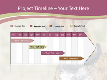 0000071133 PowerPoint Template - Slide 25
