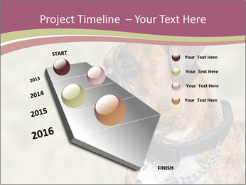 0000071133 PowerPoint Template - Slide 26
