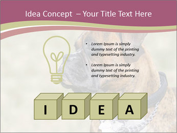 0000071133 PowerPoint Template - Slide 80