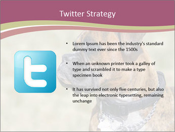 0000071133 PowerPoint Template - Slide 9