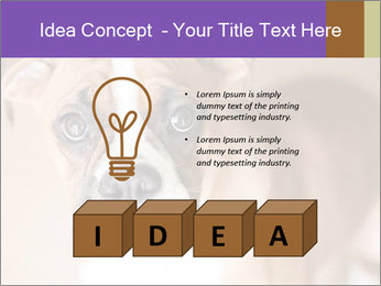 0000071137 PowerPoint Templates - Slide 80